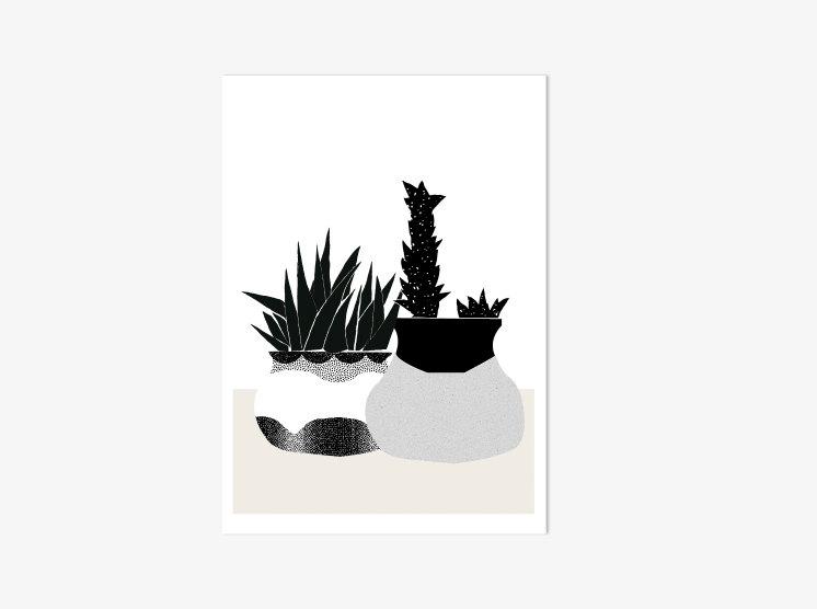 black&whitesucculentsprint002