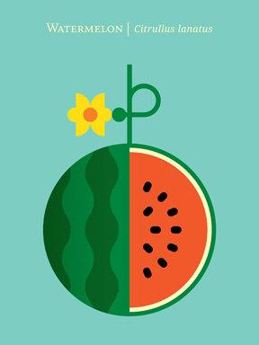 watermelonprintchrisotpherdinaetsy0002